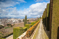 Gardens in Granada in winter Stock Photography