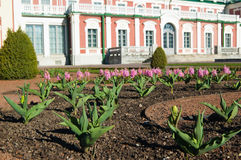 Gardens of Kadriorg Palace  in Tallinn Royalty Free Stock Photos