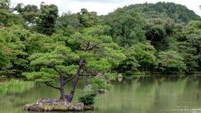 Gardens of the Kinkaku-ji Temple in Kyoto, Japan Stock Images