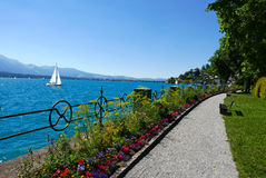 Gardens and lake Thun royalty free stock images