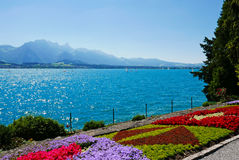 Gardens and lake Thun Royalty Free Stock Photography