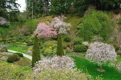 Gardens landscaping Stock Photos