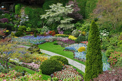 Gardens landscaping Stock Images