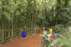 Gardens majorelle on a rainy day Stock Photos
