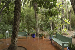 Gardens majorelle on a rainy day Stock Photo