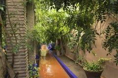 Gardens majorelle on a rainy day Stock Image