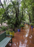Gardens majorelle on a rainy day Royalty Free Stock Image