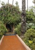 Gardens majorelle on a rainy day. Gardens Majorelle in Marrakech on a rainy day Stock Image