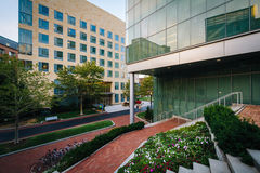 Gardens and modern buildings at Northeastern University, in Bost. On, Massachusetts Stock Photography