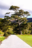 Gardens Muckross Killarney National Park, Ireland Stock Photo