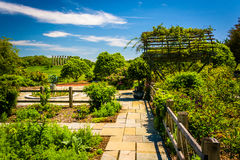Gardens at the National Arboretum in Washington, DC. Royalty Free Stock Photos