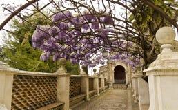 Gardens Of Villa D Este In Tivoli - Italy Royalty Free Stock Image