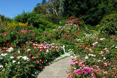 Gardens path Royalty Free Stock Images