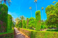 Gardens of Royal Alcazar in Seville and Grotto Gallery  Galeria. Seville, Spain - June 09, 2017 : View of big and beautiful garden - Gardens of Royal Alcazar in Royalty Free Stock Image