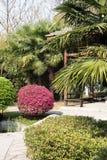 Gardens scenery Stock Photo