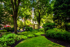 Gardens seen at Norman B. Leventhal Park in Boston, Massachusett Stock Image