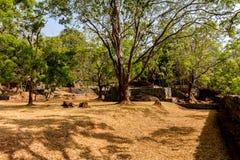 Gardens of Sigiriya Lion's rock fortress Royalty Free Stock Image