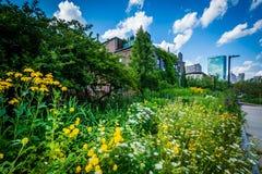 Gardens at Southwest Corridor Park, in Back Bay, Boston, Massach Royalty Free Stock Photography
