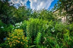 Gardens at Southwest Corridor Park, in Back Bay, Boston, Massach Stock Image