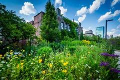Gardens at Southwest Corridor Park in Back Bay, Boston, Massachu Stock Photos