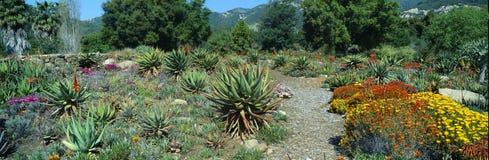 Gardens in Spring, Ojai Center for Earth Concerns, Ojai, California Stock Photo