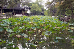 Gardens of Suzhou Royalty Free Stock Images