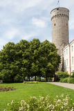 Gardens by Tall Hermann Tower Stock Photo