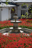 In the gardens of Topkapi Palace in Istanbul Royalty Free Stock Photos