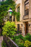 Gardens and townhouses along 23rd Street in Chelsea, Manhattan, Stock Photo