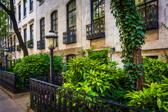 Gardens and townhouses along 23rd Street in Chelsea, Manhattan, Stock Images