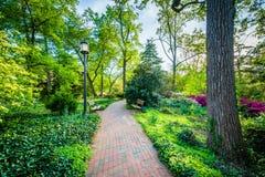 Gardens and trees along a walkway at Johns Hopkins University, i. N Baltimore, Maryland Stock Photography