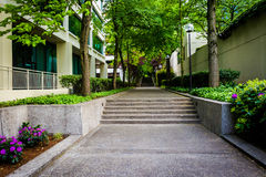 Gardens and trees along a walkway in a park in downtown Portland Royalty Free Stock Photography