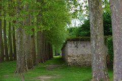 The gardens of Versailles. The gardens at Versailles Chateu in Paris France Royalty Free Stock Image