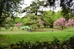 Gardens of Villa Borghese in Rome - Italy. People in the park of Villa Borghese in Rome Royalty Free Stock Photo