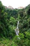 The gardens of Villa D'este. Tivoli, Italy Royalty Free Stock Photography