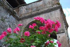 In the Gardens of Villa D`Este, Tivoli, Italy royalty free stock images