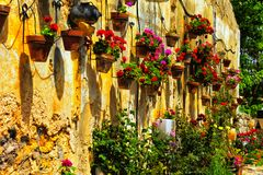 Wall with flowers at Zihron Yaakov Royalty Free Stock Photos