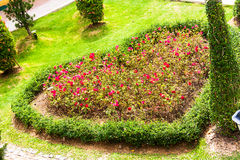 The gardens were cut into a heart shape Royalty Free Stock Photo