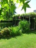 Gardenview Images libres de droits