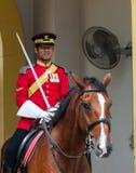 Gardes royales photo libre de droits