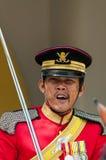 Gardes royales images libres de droits