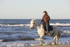 Gardians riding on White horse of Camargue France Stock Photo