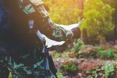 Gardien étant dans la forêt de la frontière images libres de droits