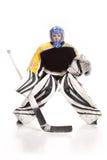 Gardien de but de hockey sur glace Photographie stock