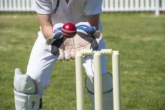 Gardien de guichet de cricket Photographie stock