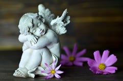 Gardien et fleurs d'ange Photographie stock