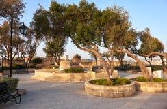 Gardjola Gardens in the early morning, Senglea, Malta Stock Photo