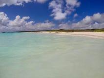 Gardner Bay parc national sur d'Espanola île, Galapagos, Equateur Photos libres de droits