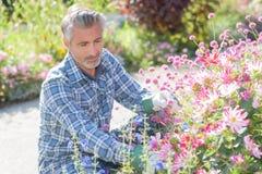 Gardner die aan bloemen neigen royalty-vrije stock afbeeldingen