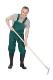 Gardner masculino com ferramenta de jardinagem? Foto de Stock Royalty Free
